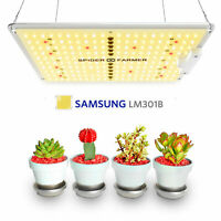 SF 600W LED Grow Light Vollspektrum Samsung LM301B VEG Bloom Indoor Plants Lamp