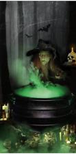 WITCH Gruesome & Gory Door Covering Door Decoration Halloween Party Prop New