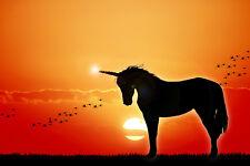 Vlies-Fototapete UNICORN MAGIC, Magisches Einhorn im Sonnenuntergang 232,5x155cm