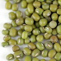ORGANIC MUNG BEAN SPROUTING SEEDS - GROW SPROUTS, FOOD STORAGE, CHINESE FOOD