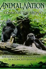 Animal Nation - Congo In The Bronx. NEW ITEM