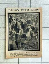 1915 Essex Battalion National Volunteer Reserve Digging Sunday Trenches
