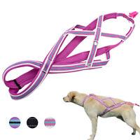 Weight Pulling Sledding Dog Harness X-back Style Training Reflective Padded Vest
