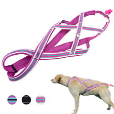 Weight Pulling Sledding Dog Harness X-back Style Training Reflective Padded Vest