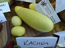 Kachra - Indian cucumber-melon - 10+ seeds