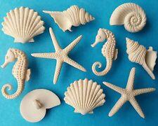 BEACH BEAUTIES - Star Fish Seahorse Seashell Sea Shell Dress It Up Craft Button