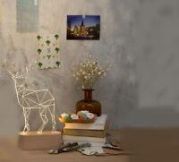 Creative LED Height 30cm Deer Decoration Beech+Resin Table Light/Lamp #
