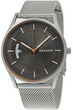 Skagen Holst Date 40mm Grey Dial Silver Tone Steel Mesh Men's Watch SKW6396 SD