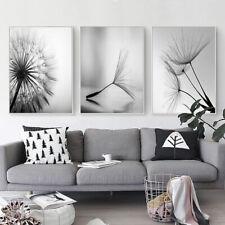 Black White Flower Canvas Print Dandelion Posters Art Modern Home Wall Decor