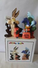 Warner Bros 1993 Road Runner and Wile E. Coyote Cactus Salt and Pepper MIB #H840