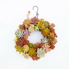 Iron Ring Wire Wreath Frame Succulent Pot Metal Hanging Planter Plant Holder