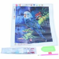 DIY 5D Diamond Embroidery Parrot Painting Cross Stitch Craft Kit Home Decor J8A6