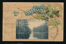 AK Leipzig, Pleissepartie, Weg nach Connewitz, Prägekarte, gelaufen 1900 (58708)