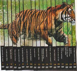 Natural Killers Zoom Sur Les Prédateurs Lot De 19 Dvd / Livrets Entre Vol 1 à 25