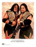 WWE HEADSHRINKERS P-210 OFFICIAL LICENSED 8X10 ORIGINAL PROMO PHOTO VERY RARE