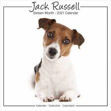 Jack Russell Studio Calendar 2021 Premium Dog Breed Calendars