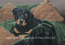 More details for rottweiler dog ltd edition fine art print by paul doyle. rottie. couch potato