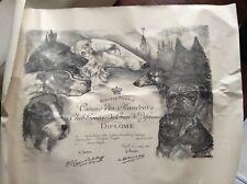 Chiens, Diplôme de la Société Royale Canine des Flandres (1er prix, 1949)