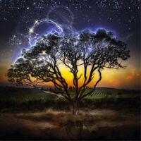Full Drill Moonlight Tree 5D Diamond Painting Cross Stitch Embroidery Decor Gift