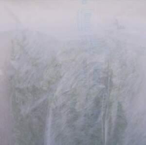 Voile d'hivernage blanc 30g/m², 6,60 mètres de large, vendu au mètre