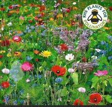 More details for seed bombs 30 wildflower bee bombs plastic free eco friendly organic bag inc