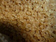 Dehydrated Organic Water Kefir Grain Crystals