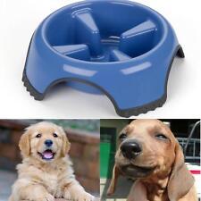 Bowl Dog Set Cat Slow Feeder Stand Feeding Food Water For Pet Dishwasher Safe