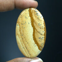 Cts. 60.00 Natural Picture Jasper Cabochon Oval Cab Exclusive Loose Gemstone