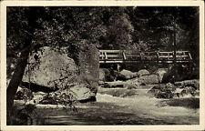 Triebtal Vogtland DDR AK Waldpartie Brücke Landpoststempel Meßbach über Plauen