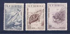r  ROUMANIE  poisson  tortue   oiseau  1670/72  **