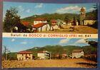 PARMA - SALUTI DA BOSCO DI CORNIGLIO - 1970