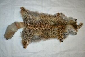 1PC Tanned Red Fox pelt,painted Bobcat sewing, soft tan, great value #1 IN500