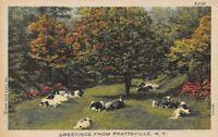 Greetings from Prattsville NY Curt Teich C T Farm Scenes
