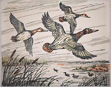 Vintage Ink Drawing of Three Ducks Flying Over Lake w/ Cat Tails, Signed & 1 / 2