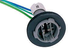 ACDelco GM#12083005  LS11 Cornering Lamp Socket FREE SHIPPING