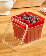 2-IN-1 BERRY BASKET