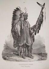Karl Bodmer Mandan Indianer Häuptling Missouri Lanze Skalp Kriegsbemalung Federn