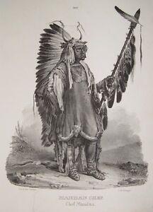 Karl Bodmer Mandan Indianer Häuptling Missouri Lanze Skalp Kriegsbemalung Tattoo