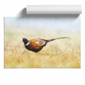 A Pheasant Bird Painting Wall Art Poster Home Decor Picture