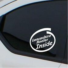 2x Lancashire Heeler stickers Inside car decal