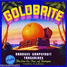Tampa Florida Goldbrite Pirate Treasure Orange Citrus Fruit Crate Label Print