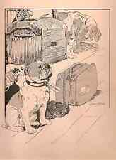 Bulldog, Town Dog in the Country, Vernon Stokes RARE