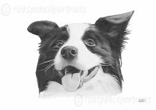 BORDER COLLIE Working Sheepdog Drawing Print Unique Present For Owner Lover Gift