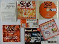 GIANT GRAM All Japan Prowrestling 2 DC Sega Dreamcast Spine From Japan