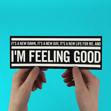 "Nina Simone Sticker! ""Feeling Good"" new dawn, a new day, muse, eels, jazz blues,"