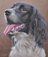 Splendid John Silver Original Oil Painting - Portrait Of A Springer Spaniel Dog