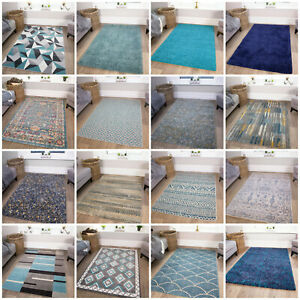 Modern Blue Small Large Rugs Teal Turquoise Duck Egg Traditional Living Room Rug