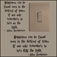 SMALL HARRY POTTER QUOTE DUMBLEDORE TURN LIGHT ON A 5 4 3 CHOICE ORIENTATION