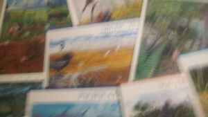 US Postage Nature in America in 12x self stick sheets MNH
