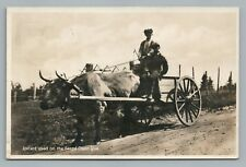 Oxcart—Gaspe Quebec RPPC Rare Antique CPA Photo—Washington DC Cancel 1935